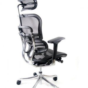 Fotel biurowy Ergomax Ergohuman Elite